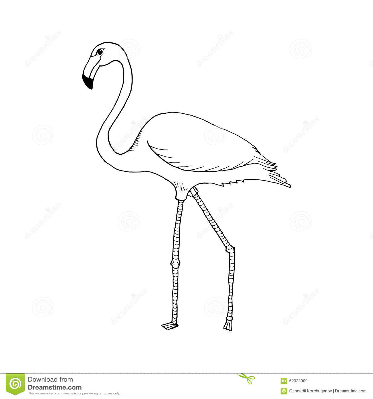 Hand Draw Flamingo Style Sketch On A Black White Stock