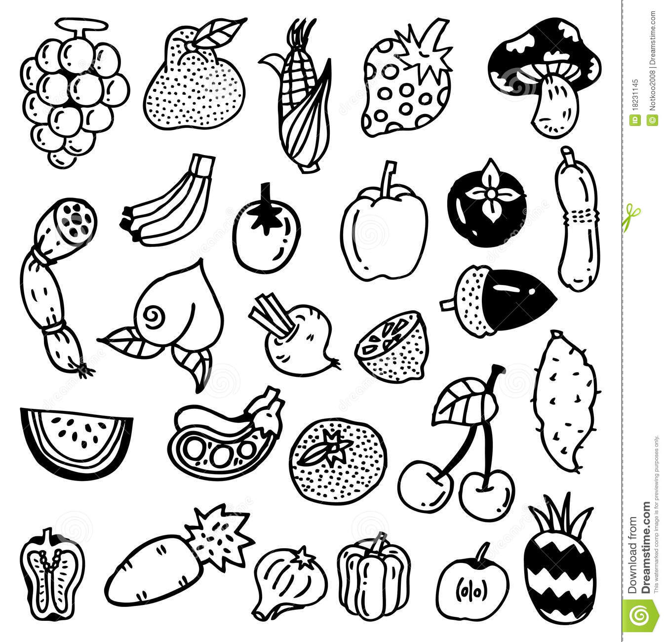 Hand Draw Vegetable Stock Vector Illustration Of Bean