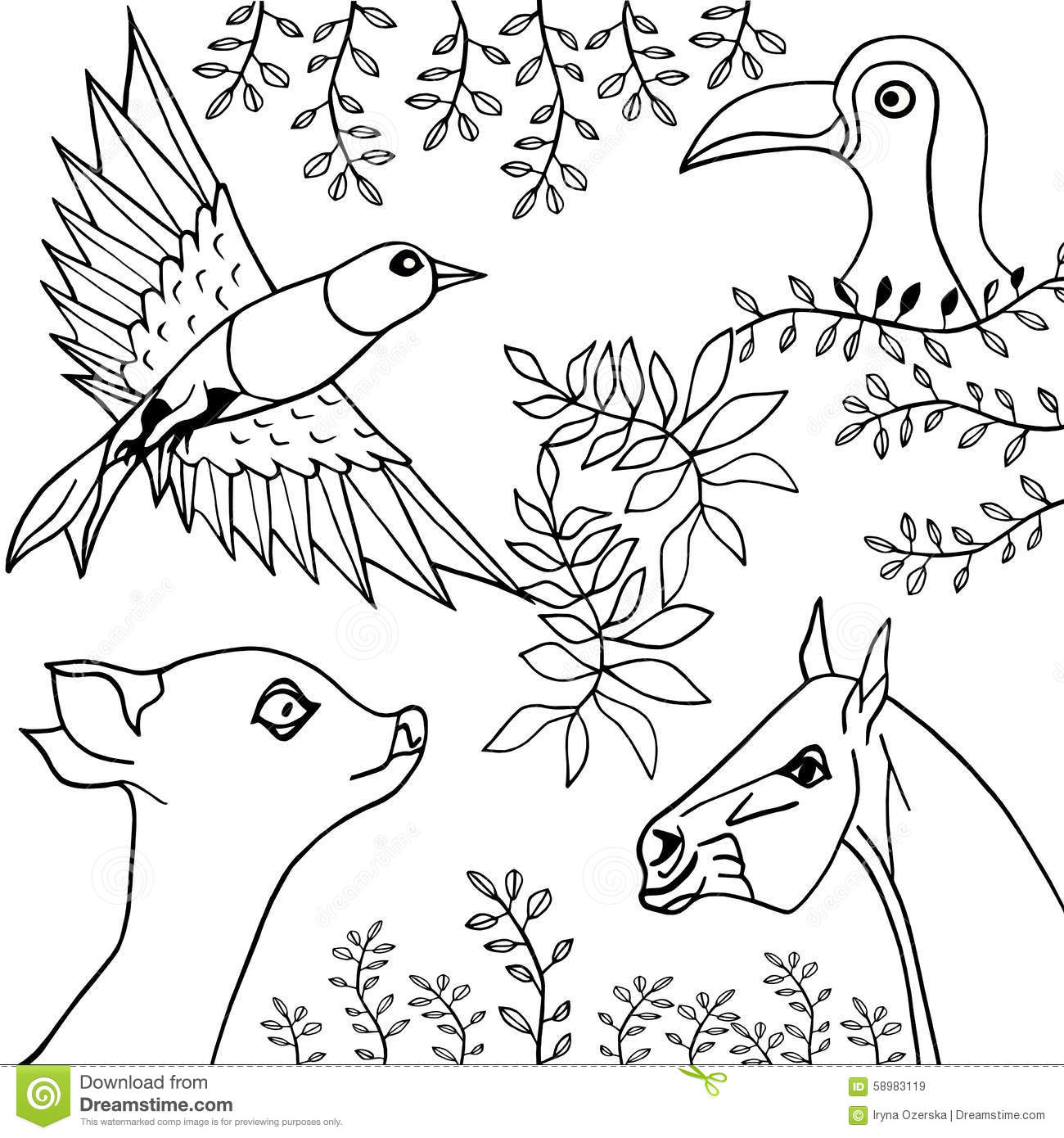 Hand Drawn Collection Of Animals, Birds And Plants