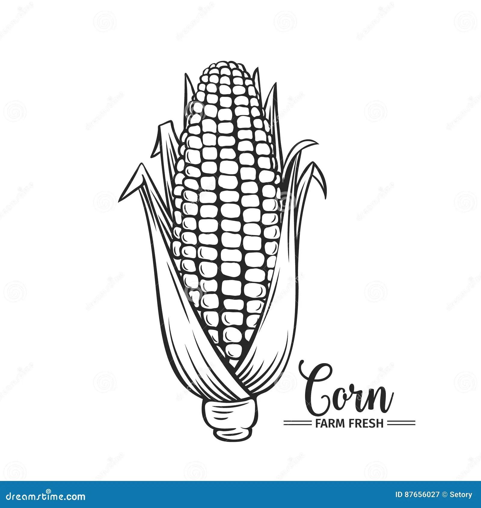 Rye Grain Oats