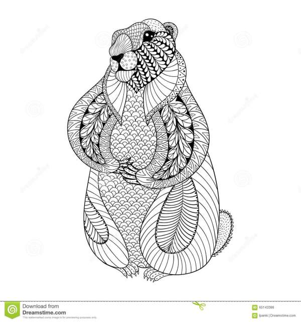 Hand Drawn Groundhog Adult Coloring Pages In Doodle Stock Vector - Illustration Of Natural