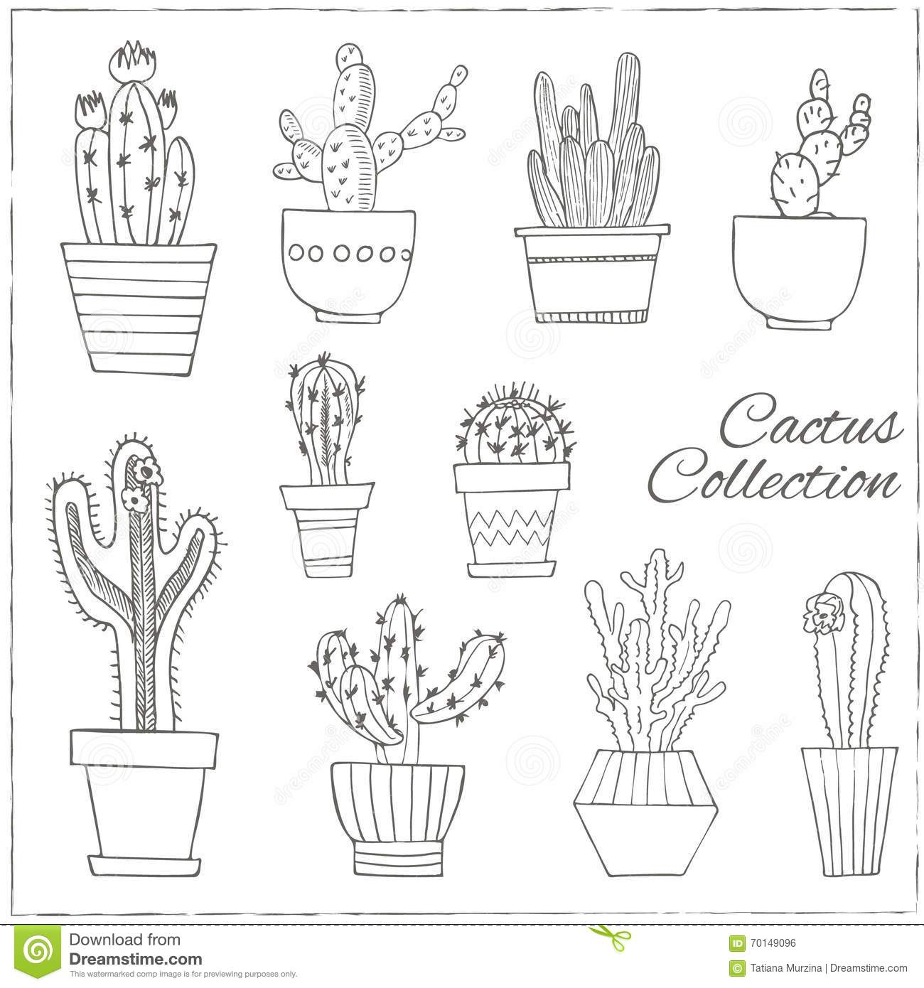 Hand Drawn Set Of Cactus In The Pots Stock Vector