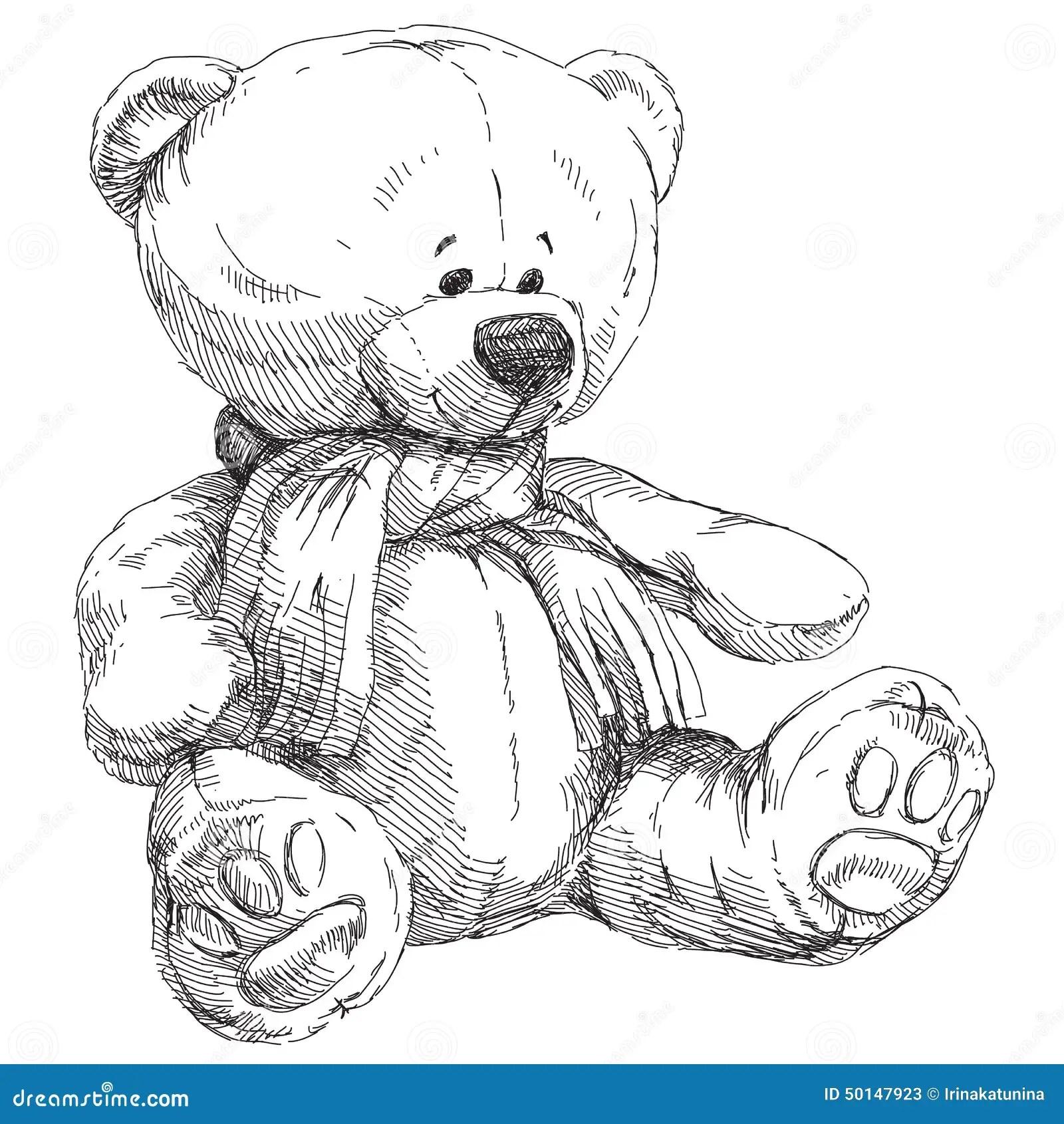 Hand Drawn Teddy Bear Stock Vector Illustration Of