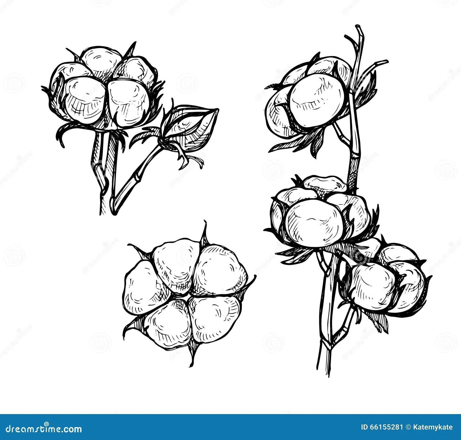 Flower Filter Diagram