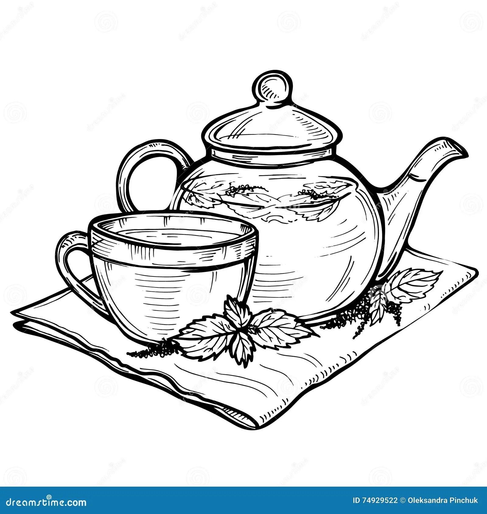 Hand Drawn Vector Sketch Of Healthy Green Tea Cup With Tea