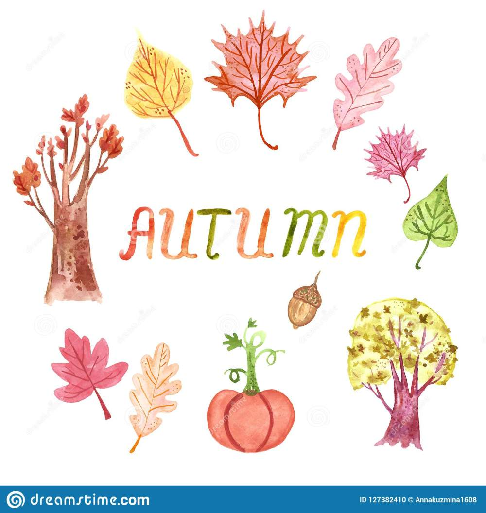 medium resolution of hand drawn watercolor autumn clipart