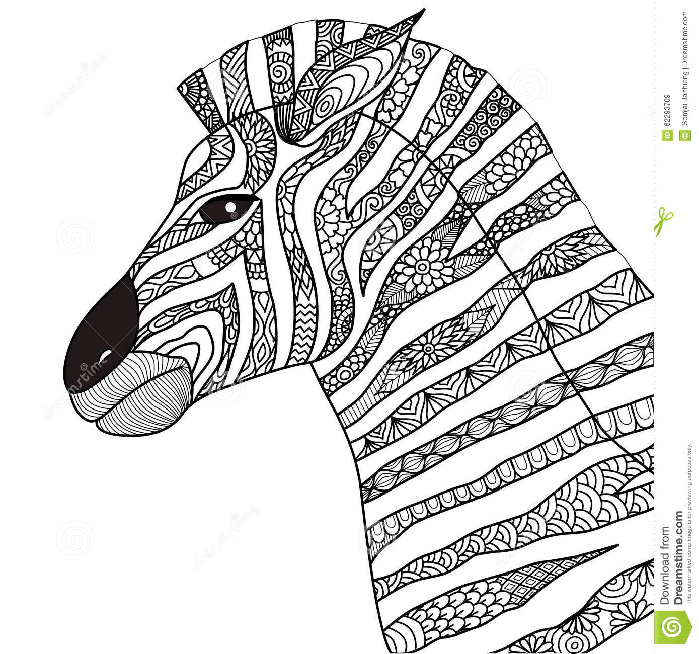 Hand Drawn Zebra Zentangle Style For Coloring Book,tattoo