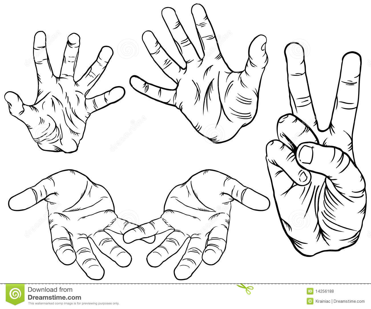 Hand Poses Stock Vector Illustration Of Open Peace