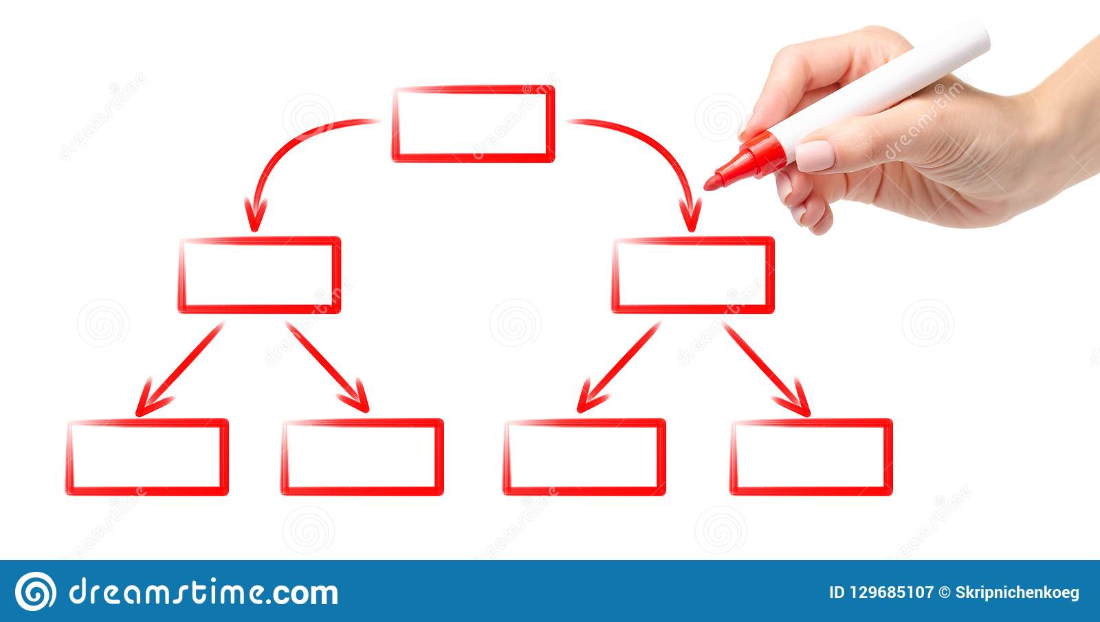hight resolution of hand red marker drawing diagram scheme empty flow chart