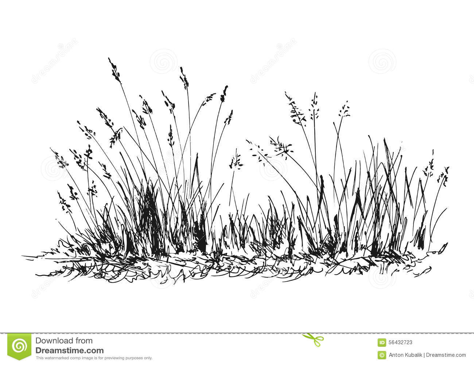 Hand Sketch Grass Stock Vector