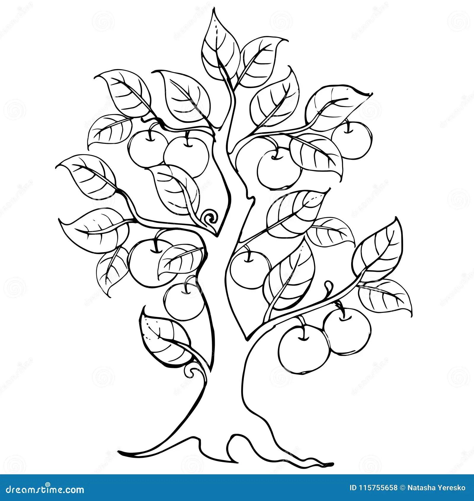 Hands Drawing Apple Tree Vector Artwork Illustration For