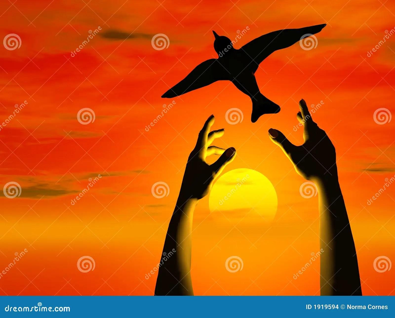 Hands Free Bird Into Sunset Illustration 1919594 Megapixl