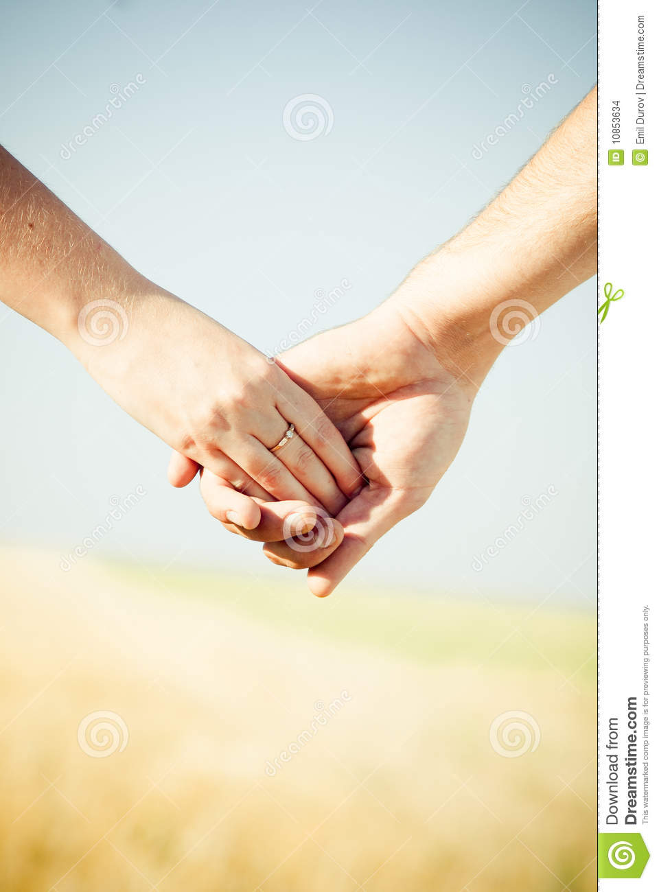 Hands with Wedding Ring stock photo Image of family  10853634