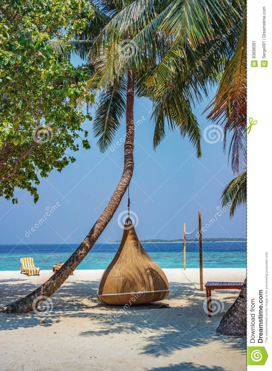 hanging chair tree camping chairs sale under the palm on a beach at maldives resort