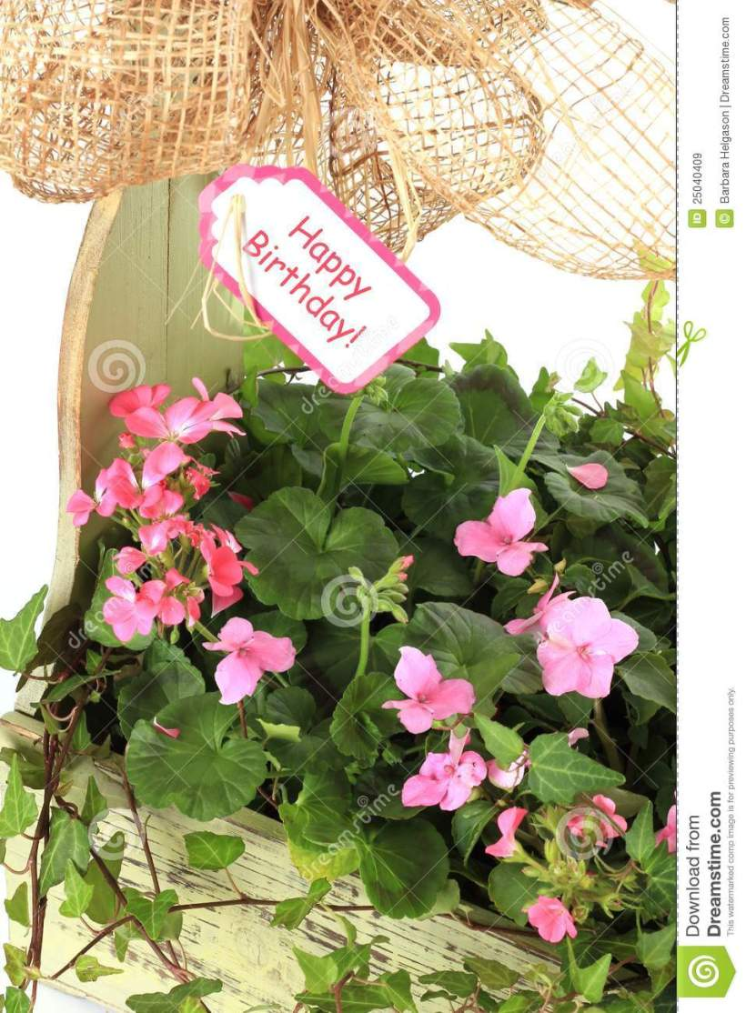 Happy birthday images flowers free bedwalls happy birthday flowers stock image of white 25040409 izmirmasajfo