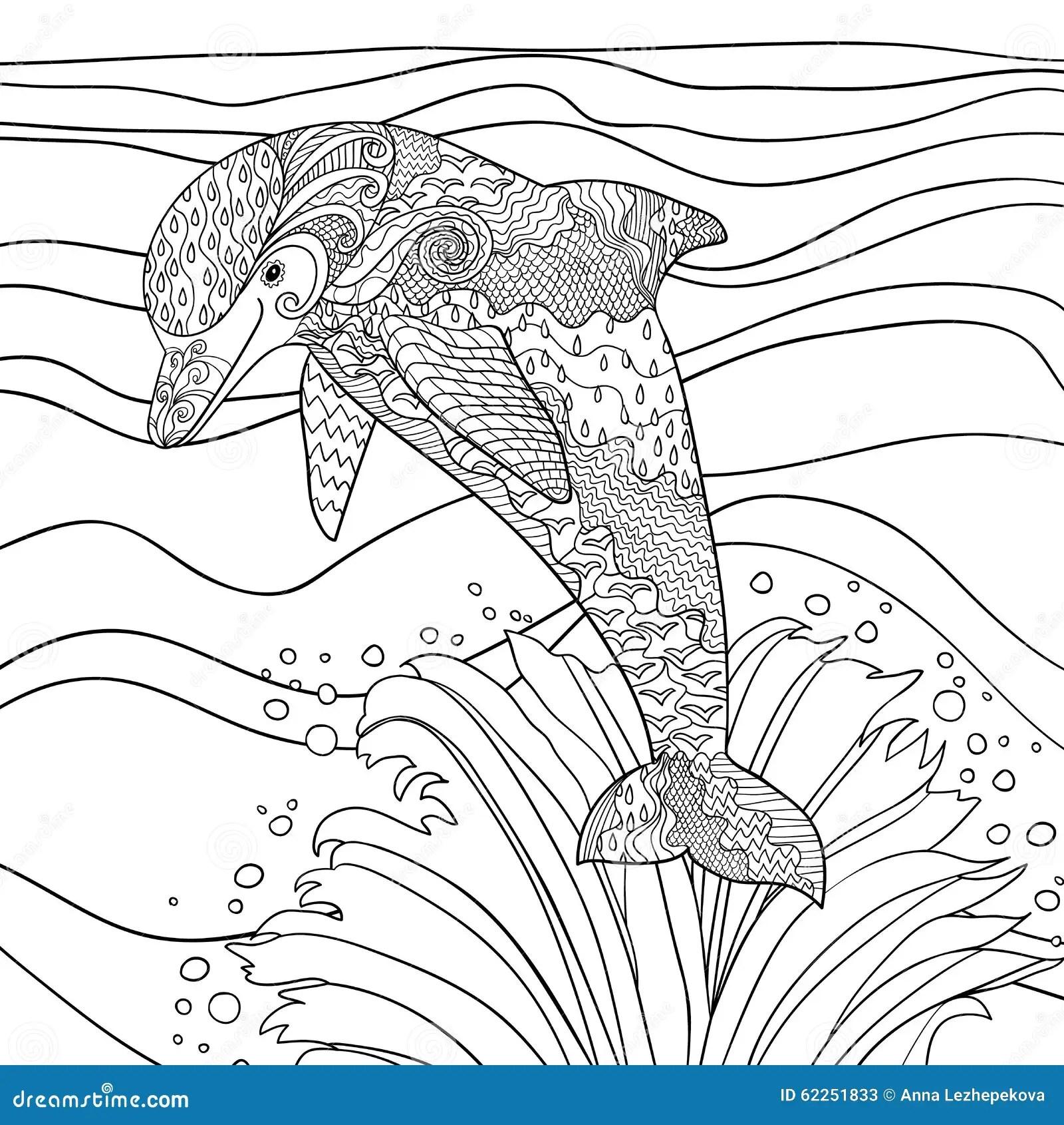 Dolphin Activity Worksheet