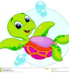cute turtle is swimming upside down [ 1300 x 1264 Pixel ]