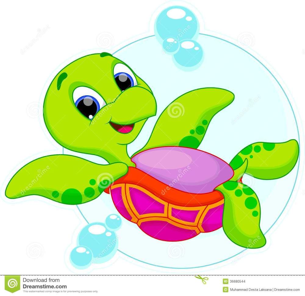 medium resolution of cute turtle is swimming upside down