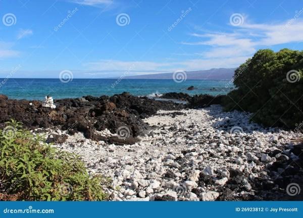 hawaii rocky beach landscape stock