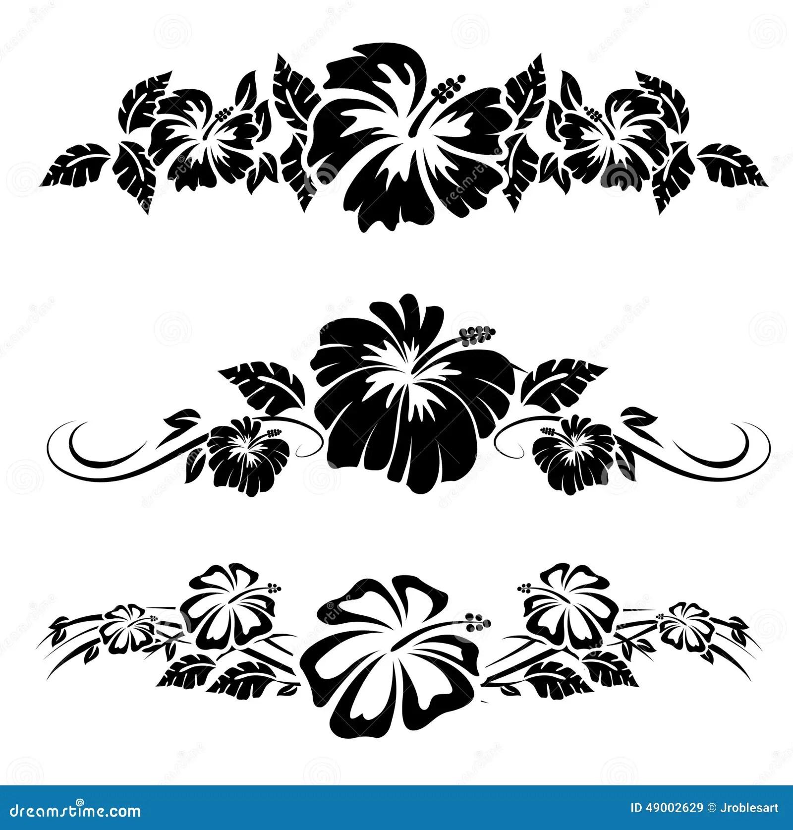 Hawaiian Hibiscus Flowers Stock Vector Illustration Of