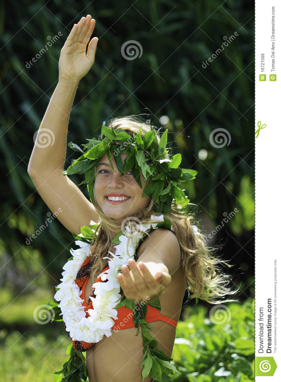 Hawaiian Hula Royalty Free Stock Images  Image 16721569