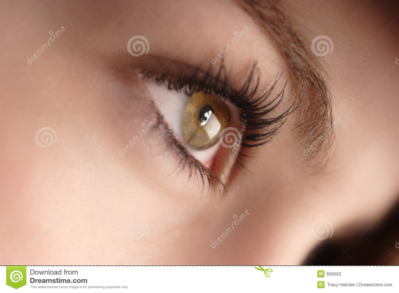 woman sitting in chair kaleigh twin sleeper bed hazel eyes stock photography - image: 666562