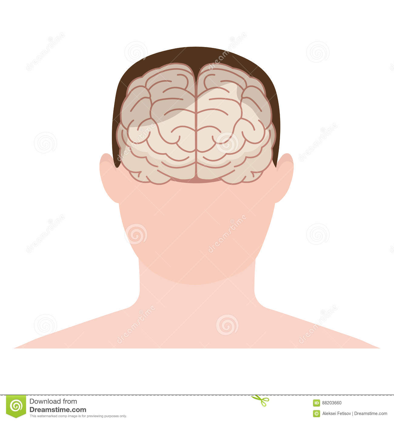 hight resolution of head human face and brain in flat style vector illustration