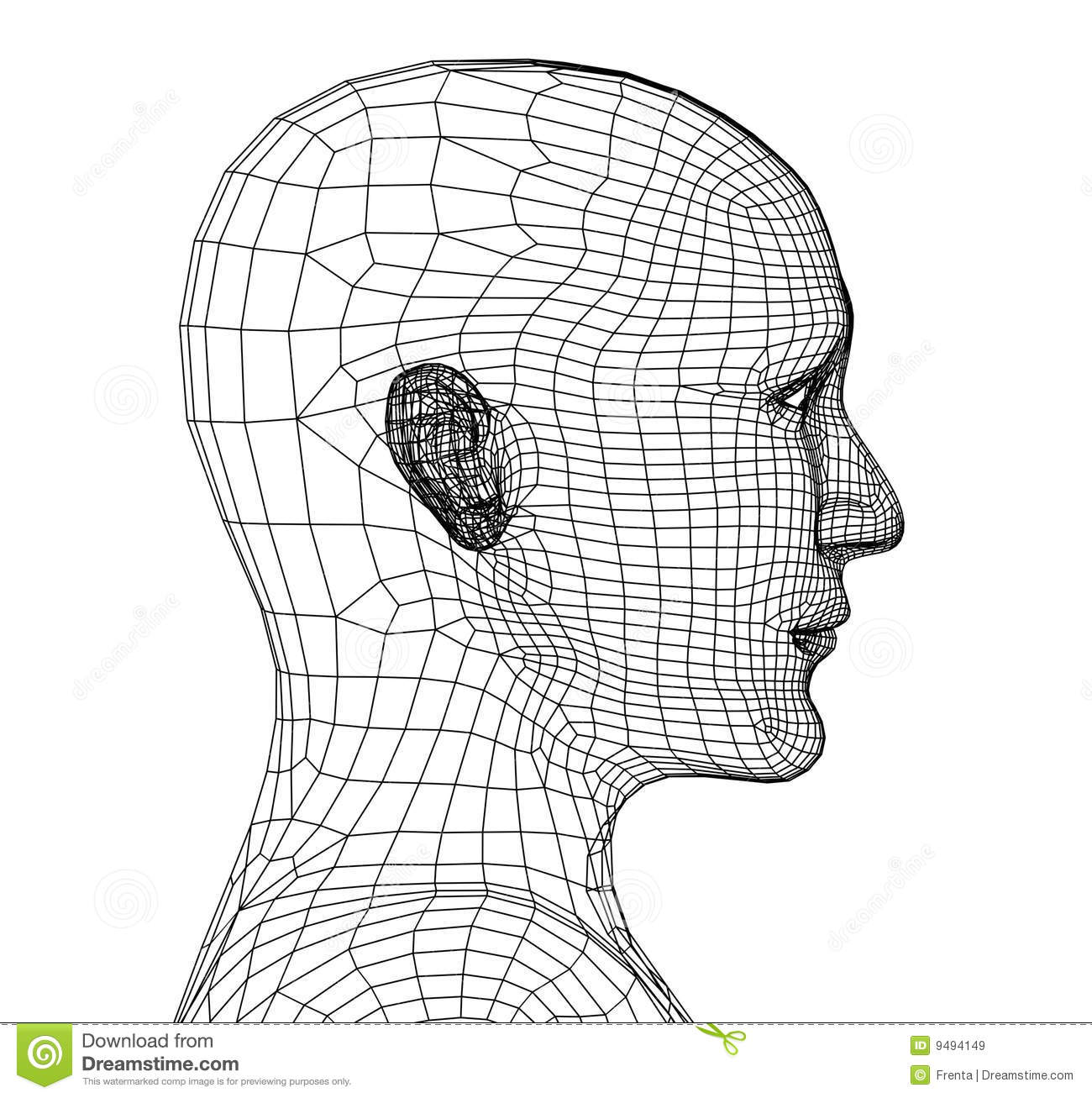 Head Of The Person From A 3d Grid Royalty Free Stock