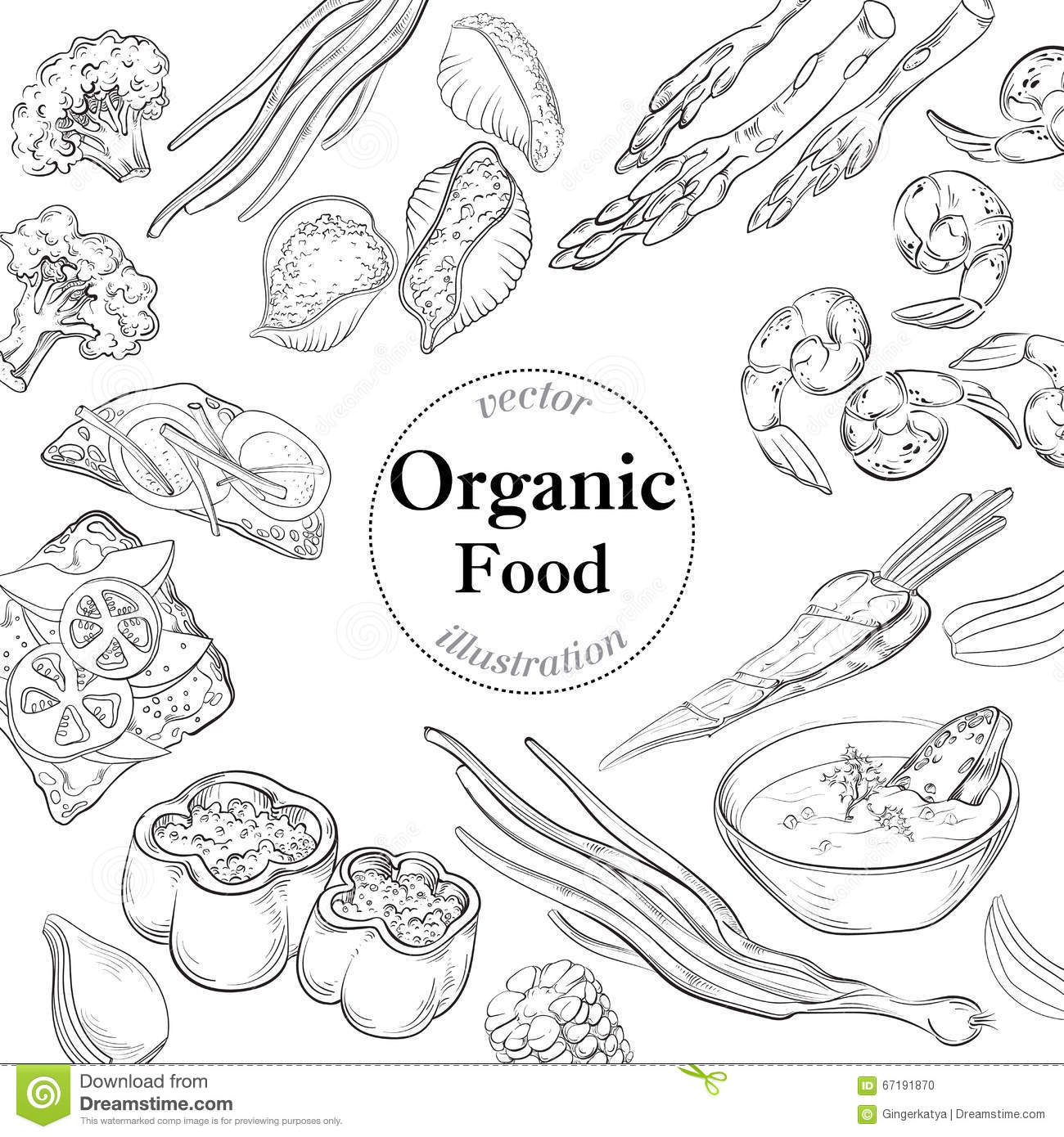 Diet And Organic Food Template. Vector Illustration