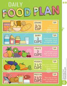 Infographic chart illustration of  healthy daily nutrition food plan proportions shows balance for successful growth education and work also stock vector rh dreamstime