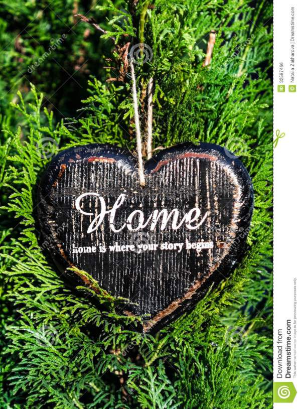 Heart Shaped Decor Sign Desk Home Country Style Green Plant Royalty Free Stock