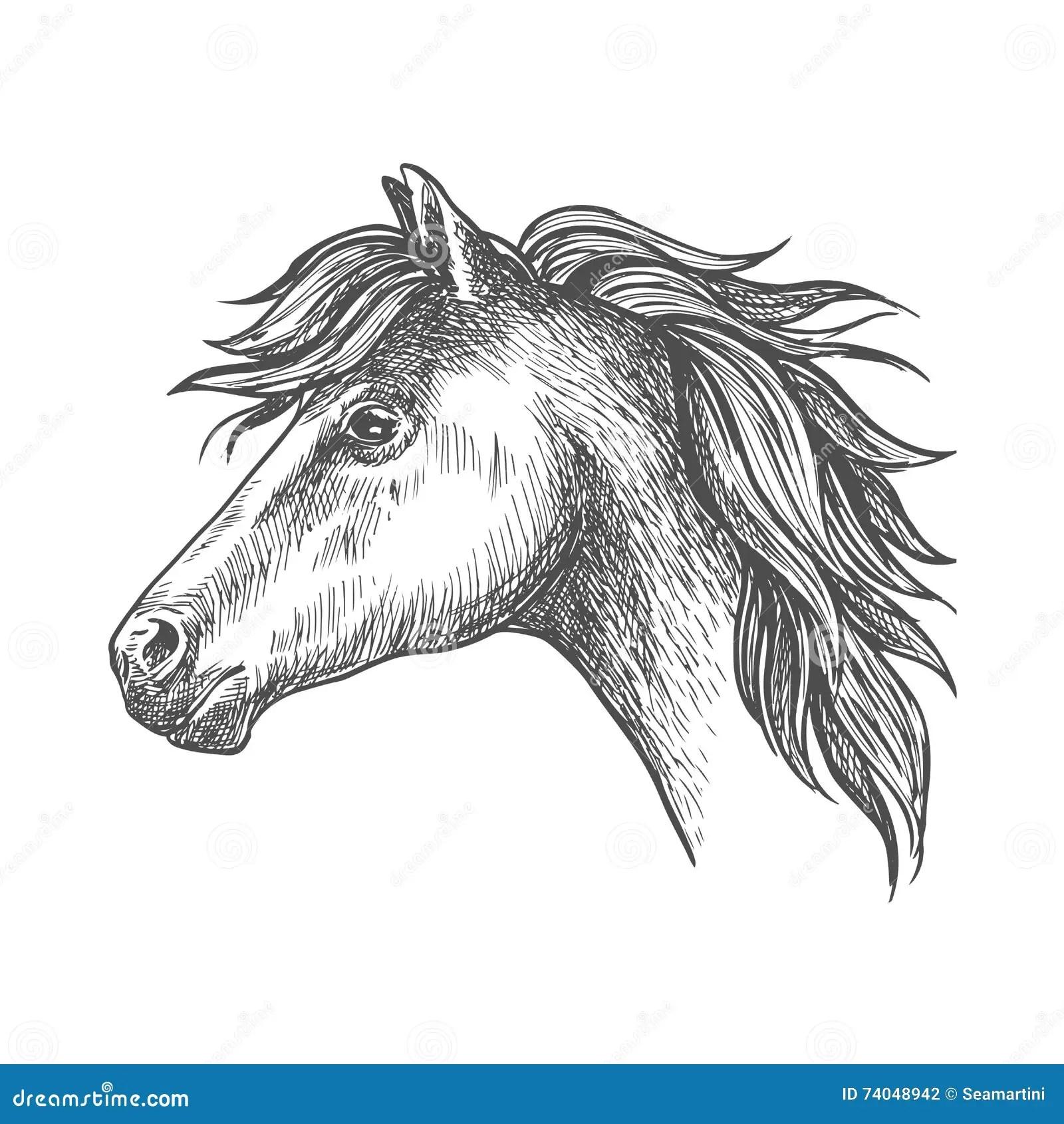 Heavy Farm Horse Profile Portrait In Sketch Style Stock