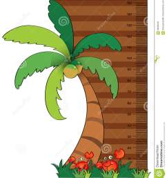height measurement chart with coconut tree [ 1178 x 1300 Pixel ]
