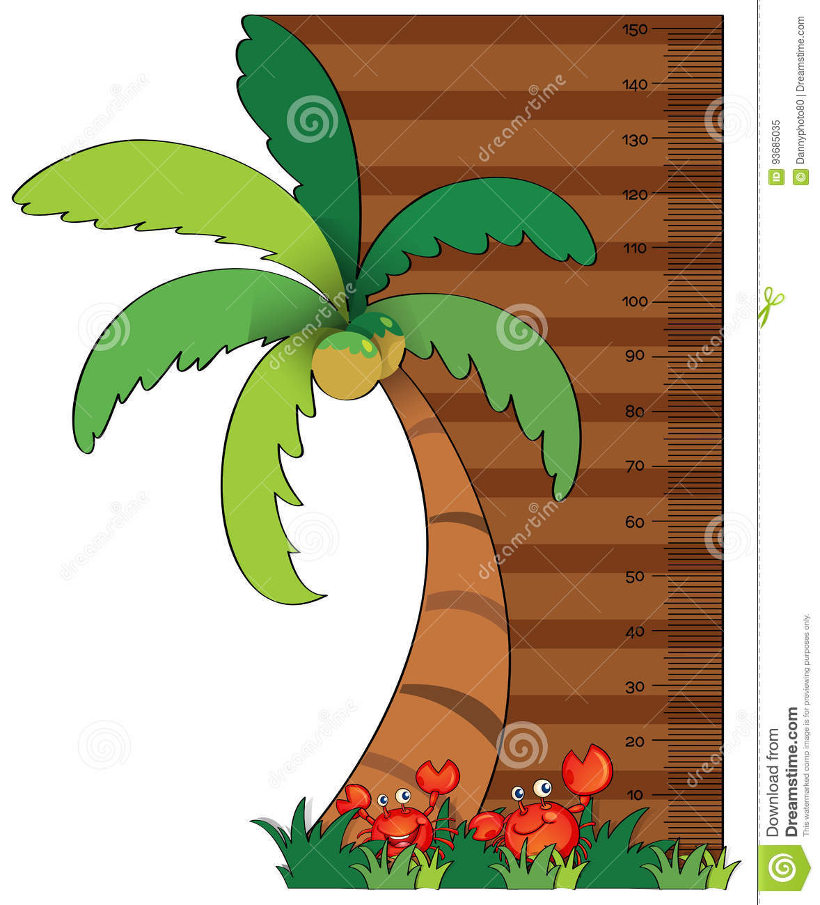 hight resolution of height measurement chart with coconut tree