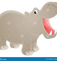 hippopotamus [ 1300 x 1165 Pixel ]