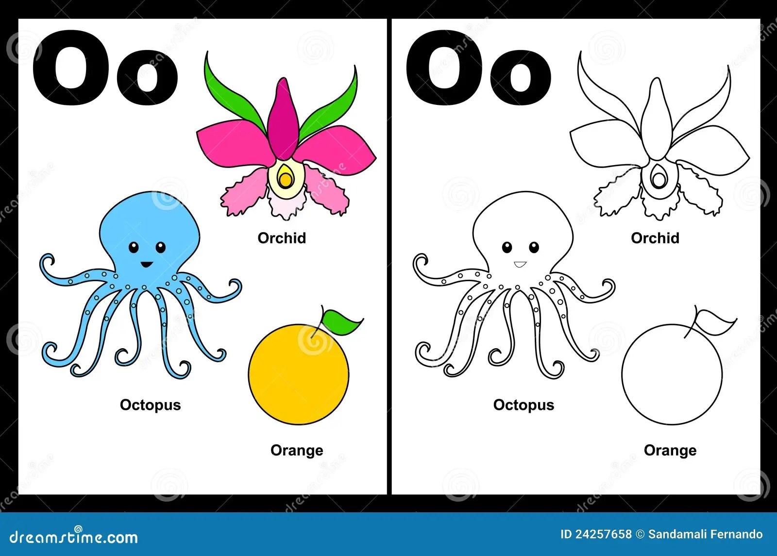 Hoja De Trabajo De La Letra O Ilustracion Del Vector