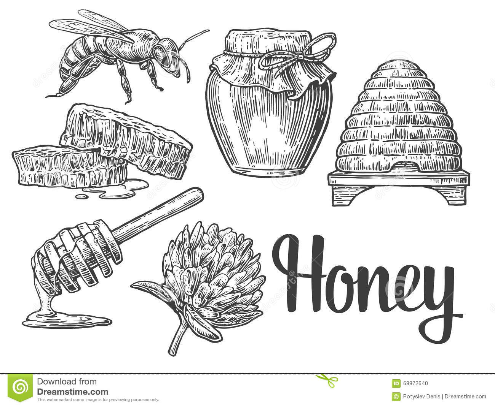 Honey Set Jars Of Honey Bee Hive Clover Honeycomb