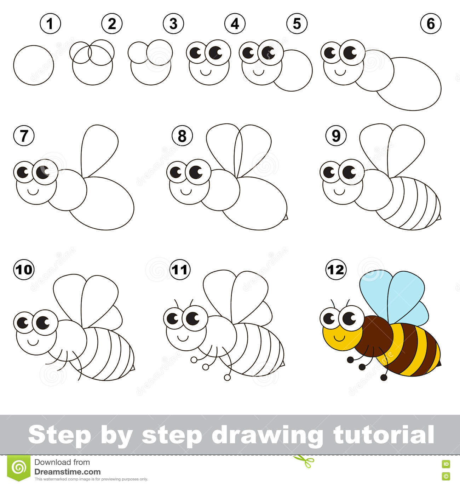 The Honeybee. Drawing Tutorial. Stock Vector