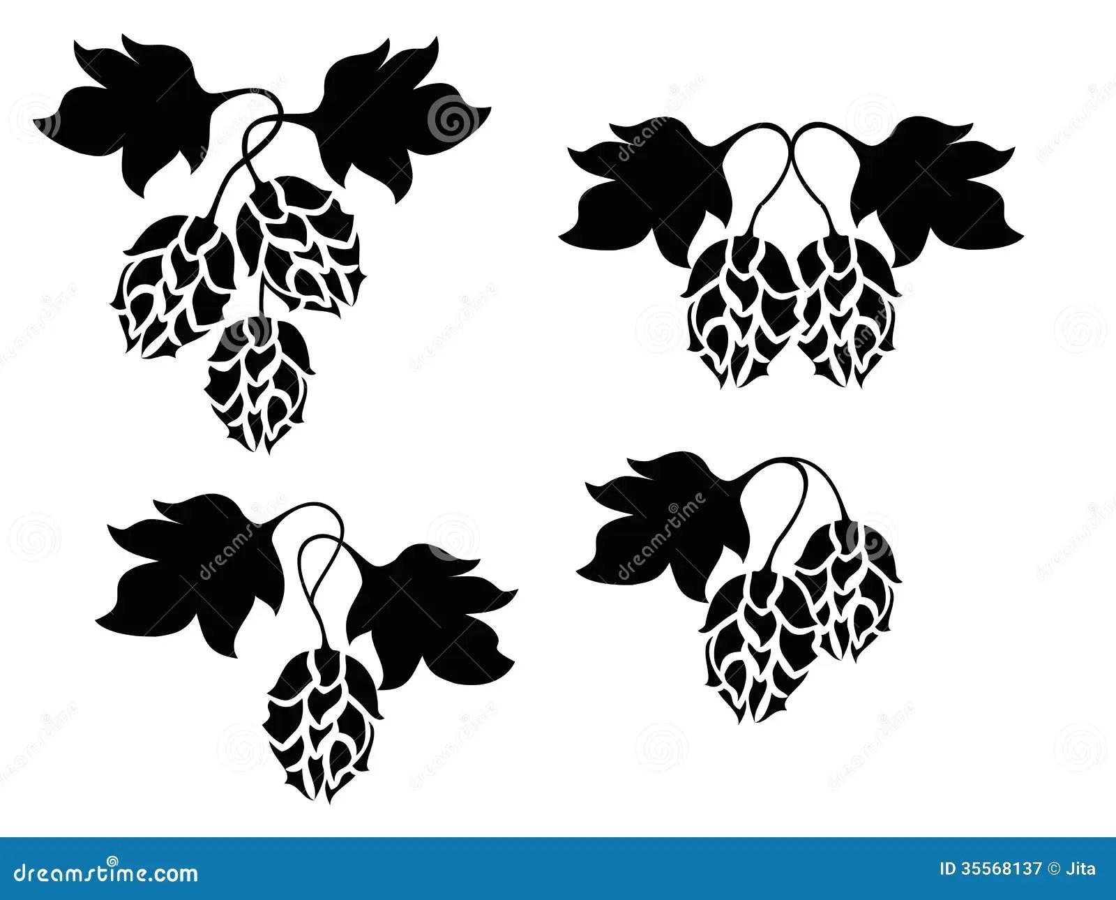 Hops Plant Stock Vector Illustration Of Fermenting