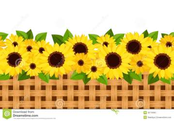 sunflower horizontal sunflowers background clip clipart flowers garden seamless vector country leaves border frame illustration wicker calendula borders line floral