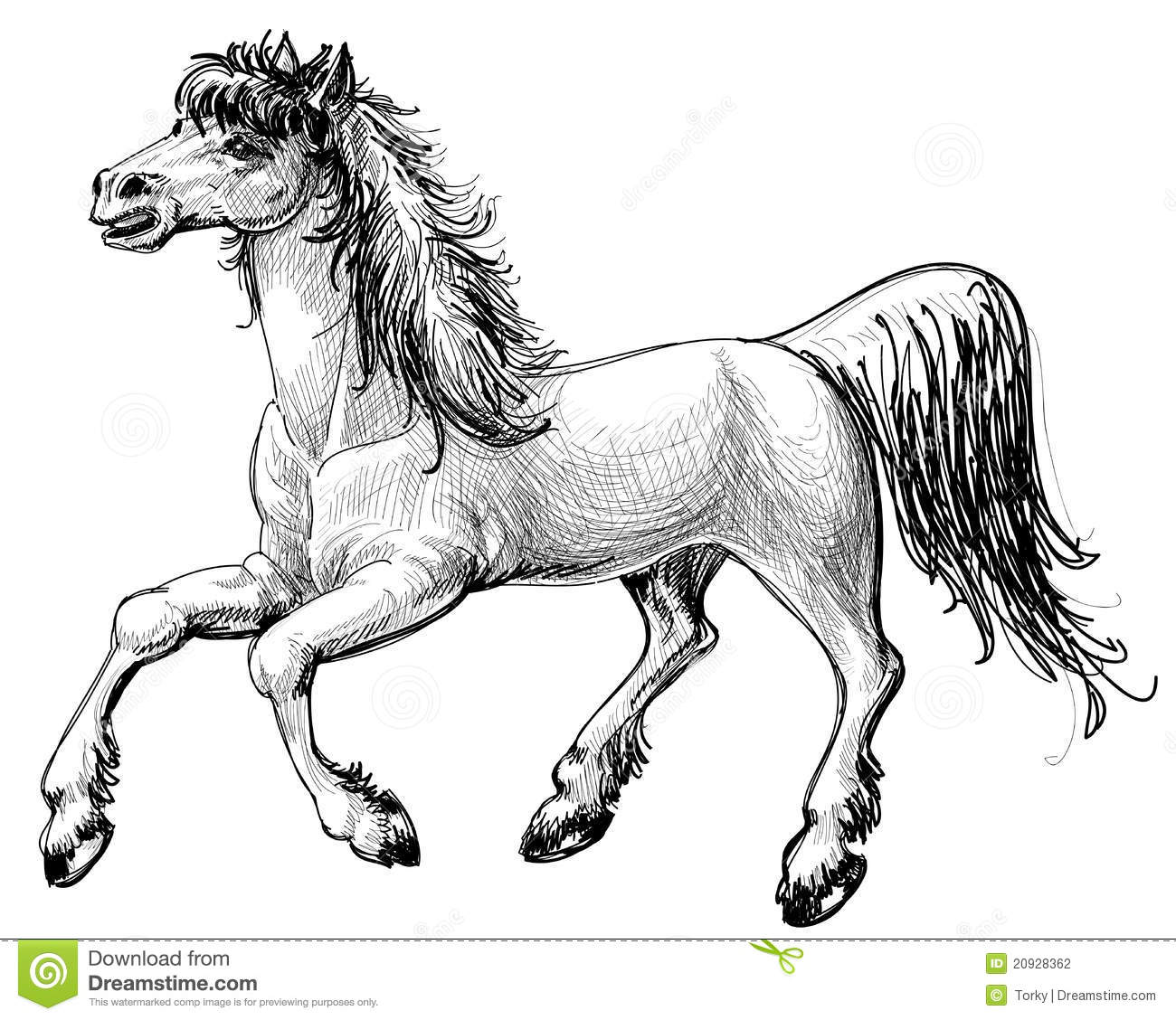 Horse Drawing Stock Photography