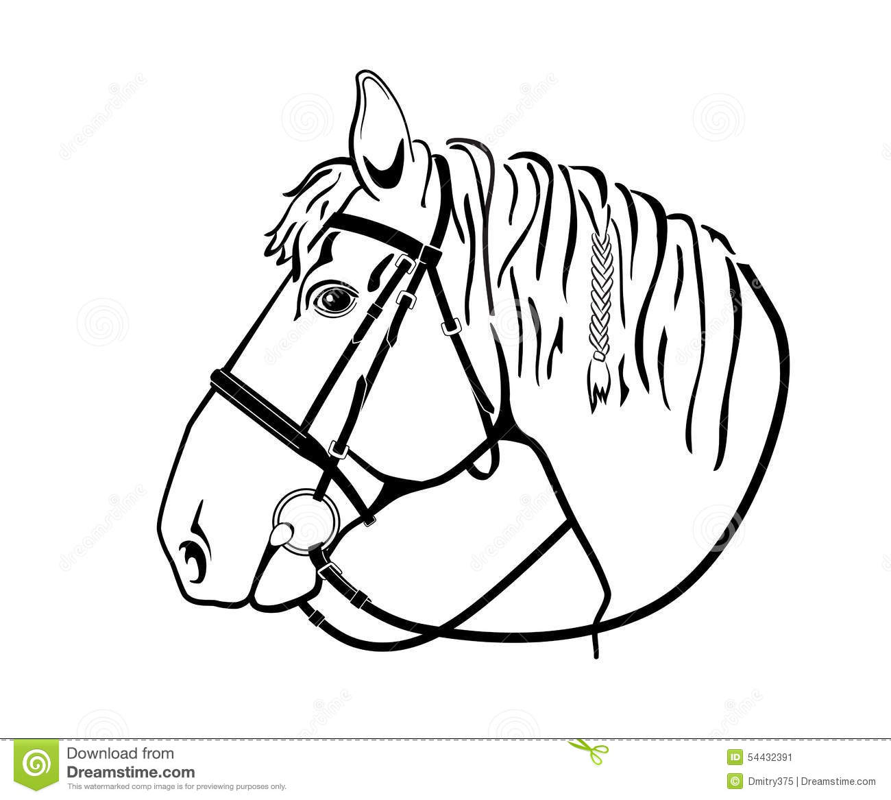 Horse Head In Harness Black And White Drawing Stock