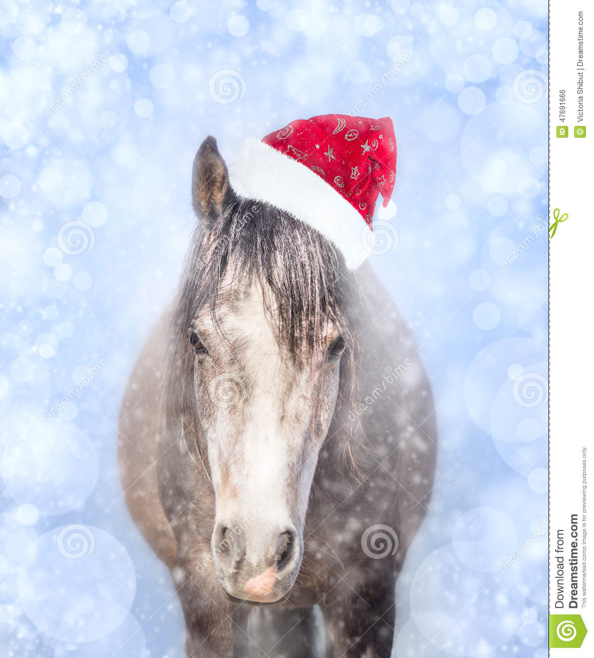 Cute Pony Wallpaper Horse In Santa Hat On A Blue Background With Bokeh And