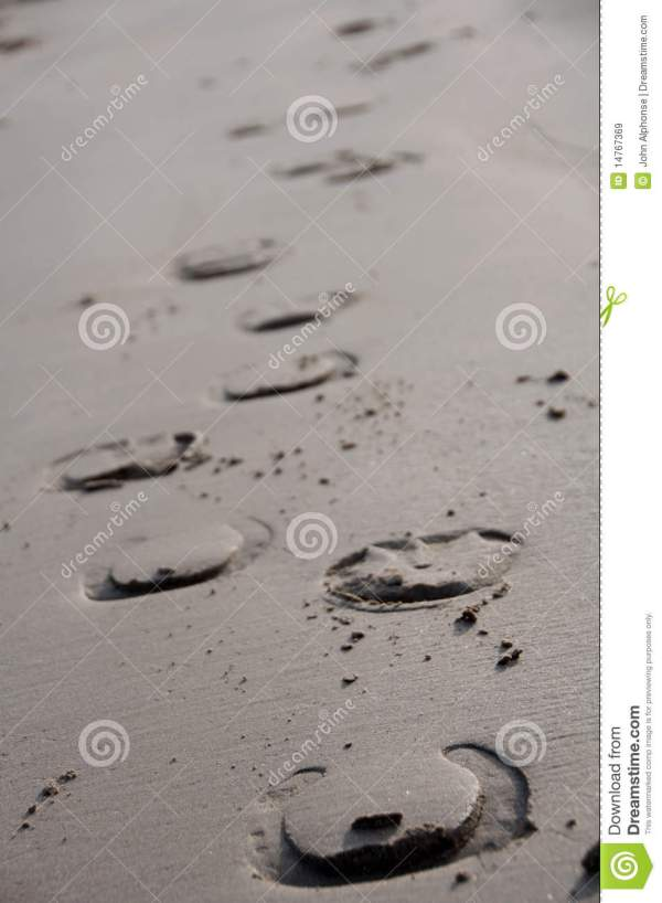 Horse Shoe Prints In Sand Royalty Free Stock