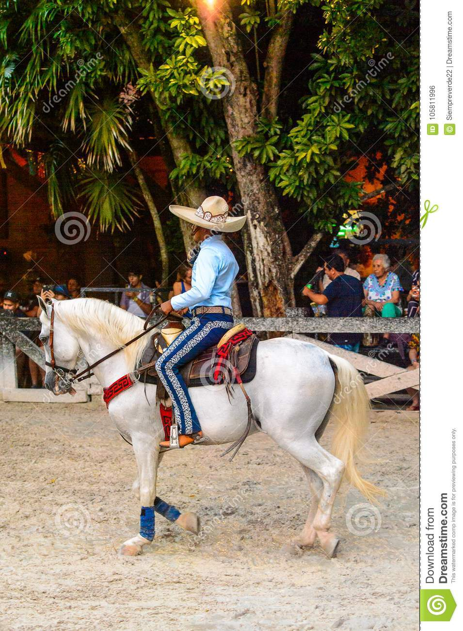 Horse show in Mexico editorial photo. Image of cowboy - 105811996