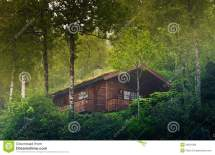 House In Norway Forest Stock Of Home
