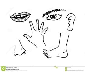 body parts human separate doodle easy hand vector illustration drawn own objects groups editing feet