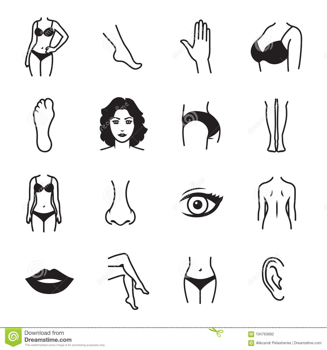Human Body Parts Icons Stock Vector Illustration Of Face