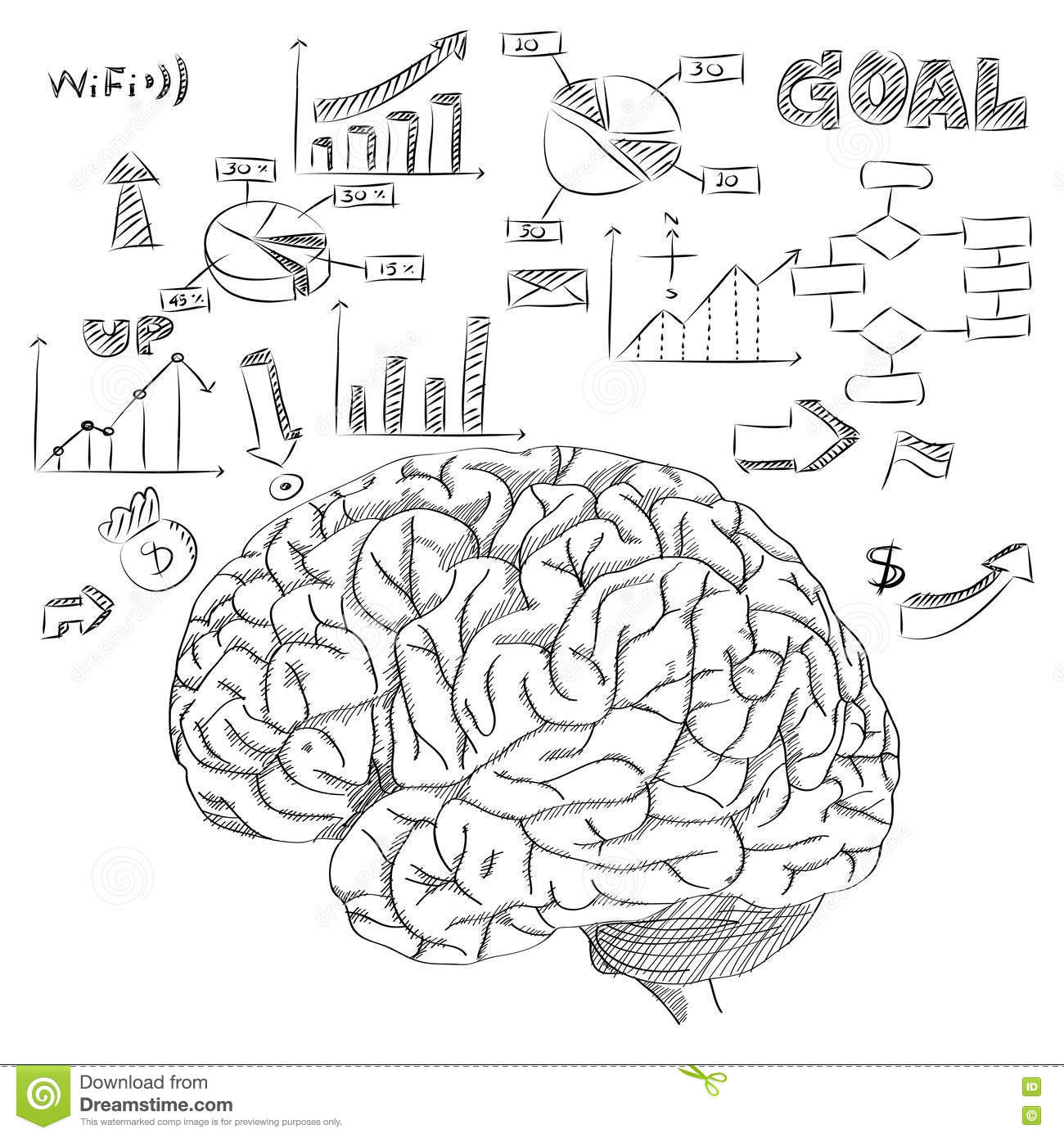 Human Brain With Infographic Diagram For Business And