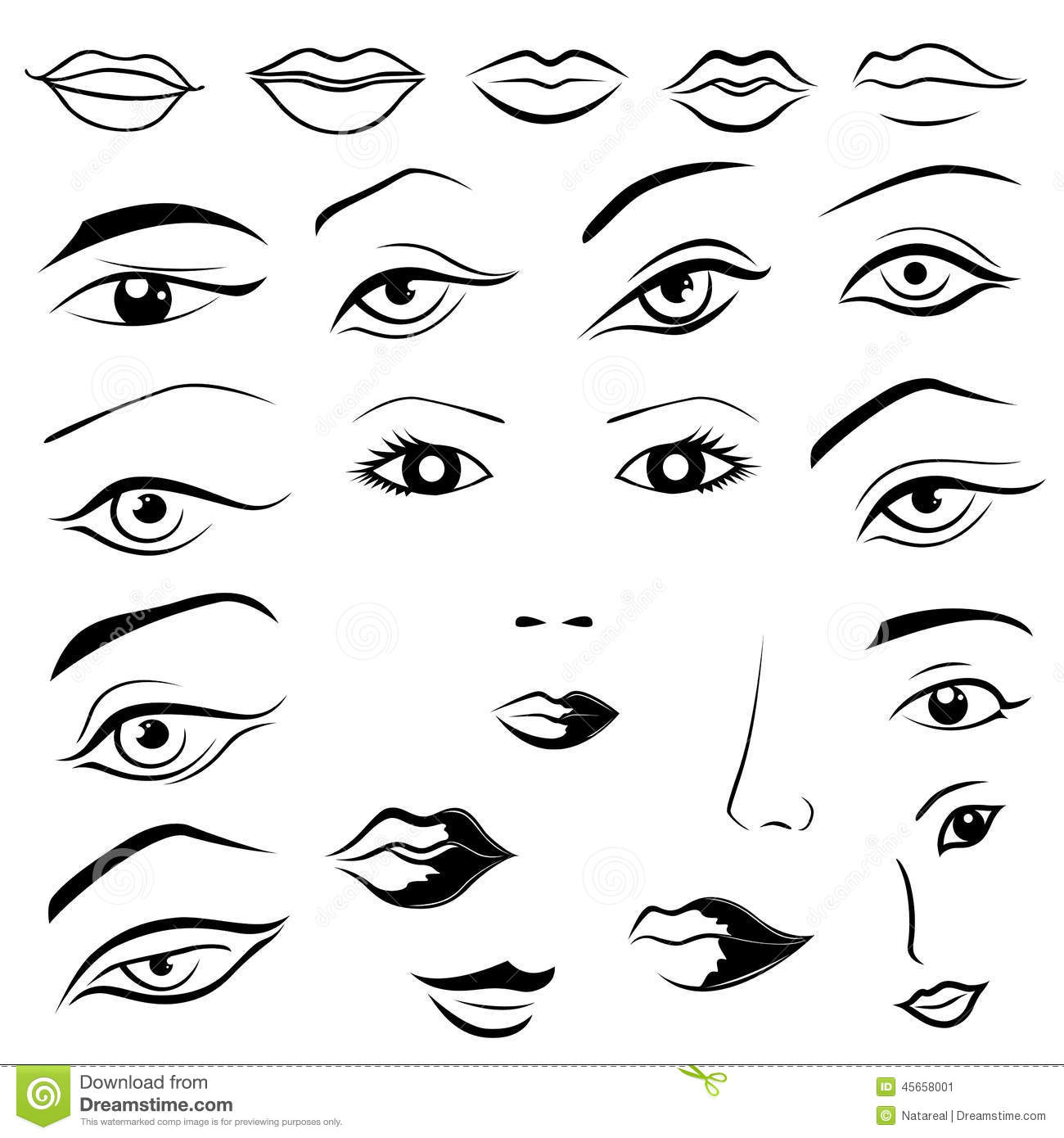 Human Eyes Lips Eyebrows And Noses Stock Vector